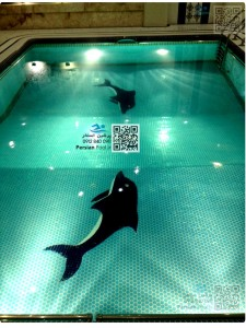 سرامیک کاری دلفین استخر